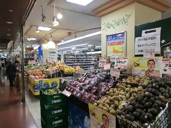 東急ストア横浜地下街店(東急ストア横浜地下街店まで1500m 品揃えも豊富なお店ですので、毎日の食卓も彩り華やか。)